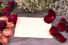 Message cards paper and little white flower for background for greeting cards. Message cards paper and roses for background for greeting cards or template or stock images