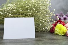 Message cards paper and little white flower for background for greeting cards. Or template or message cards stock photography