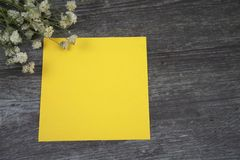 Message cards paper and little white flower for background for greeting cards. Or template or message cards stock image