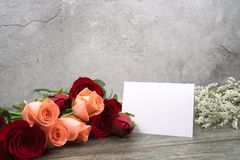 Message cards paper and roses for background for greeting cards. Or template or message cards royalty free stock images
