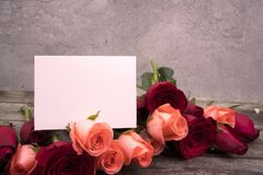Message cards paper and roses for background for greeting cards. Or template or message cards stock image