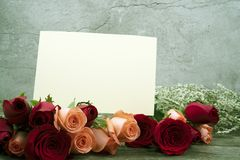 Message cards paper and roses for background for greeting cards. Or template or message cards stock photography