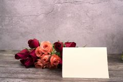 Message cards paper and roses for background for greeting cards. Or template or message cards stock photo