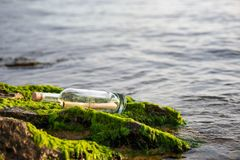 Message in a bottle on a stone covered with seaweed. Message in a corked bottle on a stone covered with seaweed stock photography