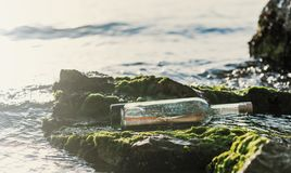 Message in a bottle on a stone covered with seaweed. Message in a corked bottle on a stone covered with seaweed royalty free stock photo