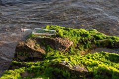 Message in a bottle on a stone covered with seaweed. Message in a corked bottle on a stone covered with seaweed stock photos
