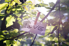 Message de l'amour en nature Photos stock