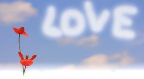 Message de pavot avec amour Photographie stock