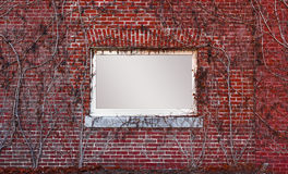 Message Frame In Red Brick Wall. Cool brick wall with sign in the center and vines growing all over it PNG available with transparent frame area so you can stock photo