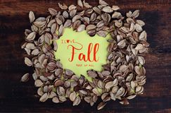 I Love Fall most of all Royalty Free Stock Images