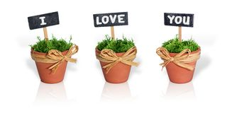 Message of love. Three pots with the message  I love you Royalty Free Stock Photos