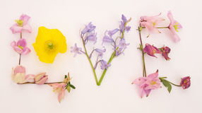 Message of love with spring flowers. Royalty Free Stock Images