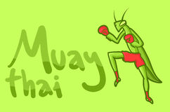 Message mantis Royalty Free Stock Photography