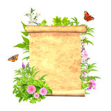 Message of nature Royalty Free Stock Photography