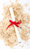 Message scroll with red ribbon on white Royalty Free Stock Images