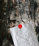 Message in a tree Stock Photos
