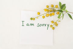 Messages card and little flowers Royalty Free Stock Photography