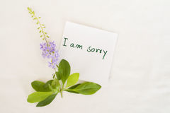 Messages card and little flowers Royalty Free Stock Photos