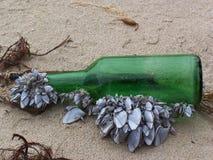 Messaggio della bottiglia Fotografia Stock Libera da Diritti