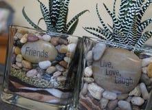 Messaggio della pianta del cactus Fotografia Stock