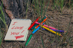 Messaggio di amore sul pavimento del pino della foresta Immagini Stock