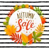 Messaggio di vendita di autunno con le foglie illustrazione vettoriale