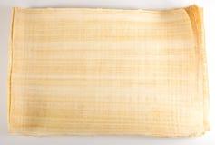 Messaggio egiziano del papiro Fotografie Stock Libere da Diritti