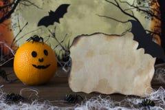 Messaggio per Halloween con l'arancia ed i ragni Fotografie Stock Libere da Diritti