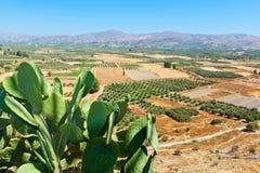 Messara plain. Crete, Greece Royalty Free Stock Images