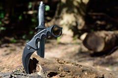 Messerkampf im Wald Lizenzfreie Stockfotografie