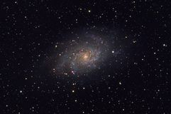 Messier 33 Triangulum galaxy in the constellation Triangulum. Taken with dedicated astrophotography camera on the telescope royalty free stock image