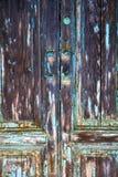Messingklopfer und Tür castiglione olona Varese Italien Lizenzfreie Stockfotografie