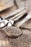 Messlöffel von Chia Seeds lizenzfreie stockfotografie