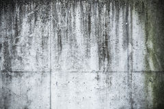 Messy grunge concrete wall texture Stock Photography
