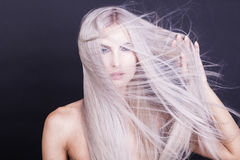 Messy long straight grey hair Stock Images