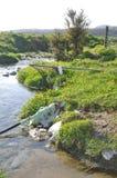 Messy waterway Stock Image