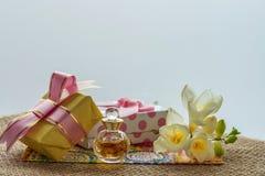Mest bra hälsningar för de älskade kvinna- eller flickablommorna och gåvaöverraskning Fotografering för Bildbyråer