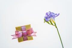 Mest bra hälsningar för den älskade flickablomman och souvenir Royaltyfria Foton