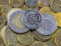 Mest bra polsk valuta Arkivbilder
