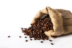 Mest choicest kaffebönor Royaltyfri Fotografi
