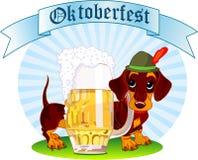 mest oktoberfest hund royaltyfri foto