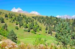 Mestia, Svaneti Georgia Royalty Free Stock Photos