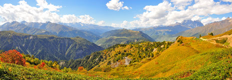 Mestia-Ushguli牛拉车旅行, Svaneti佐治亚 免版税图库摄影