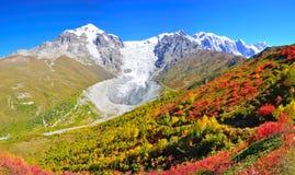 Mestia-Ushguli牛拉车旅行, Svaneti佐治亚 库存照片