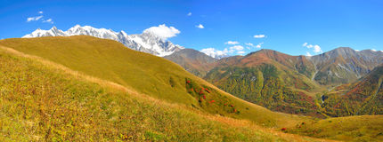 Mestia-Ushguli牛拉车旅行, Svaneti佐治亚 库存图片