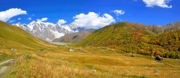 Mestia-Ushguli牛拉车旅行, Svaneti佐治亚 免版税库存图片