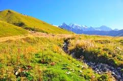 Трек Mestia-Ushguli, Svaneti Georgia Стоковые Изображения RF