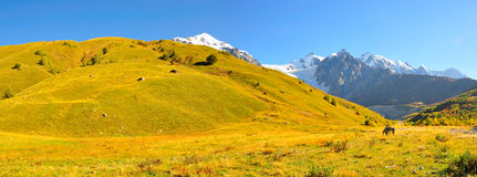 Mestia-Ushguli Wanderung, Svaneti Georgia Stockbilder