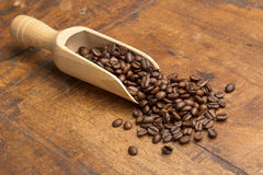 Mestolo con i chicchi di caffè Immagine Stock