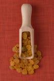 Mestolo di legno con l'uva passa dorata Fotografie Stock Libere da Diritti